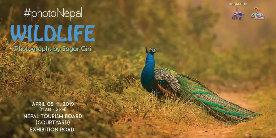 #PhotoNepal Wildlife