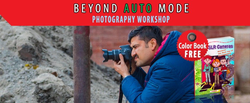 Beyond Auto Mode Photography Workshop – February 2020